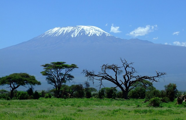 Kilimanjaro a krajina pod ním